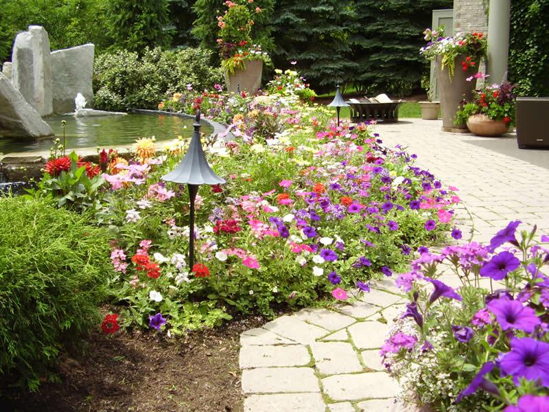 Flower Planting 1