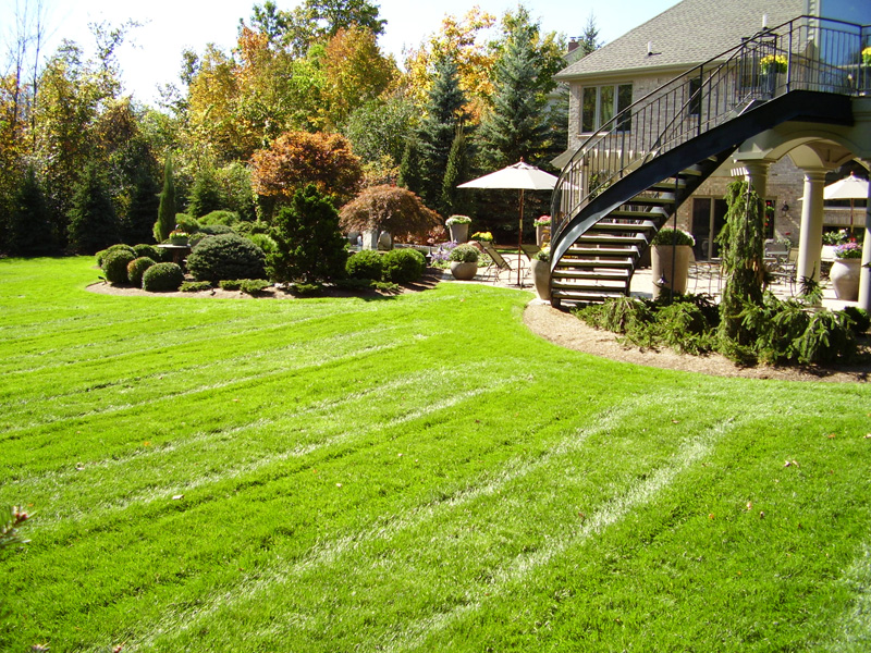 Lawn Services 2